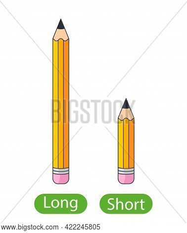 Long And Short Pencils. Concept Of Children Learning Opposite Adjectives. Vector Illustration Isolat