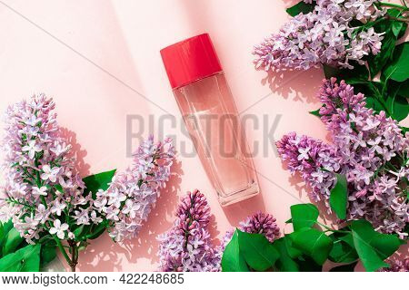 A Bottle Of Perfume And Lilac On A Pink Background . Women's Perfume. Spring Fragrance. Aromatherapy