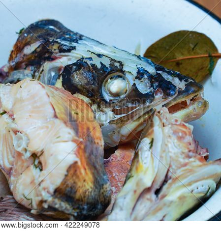 Pieces Of Boiled Fish Pike In A Plate That Look Natural. Head Of Boiled Fish
