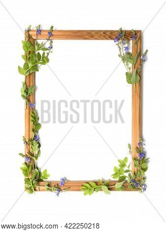Empty Floral Frame Of Green Leaves And Small Blue Flowers On A White Background. Greeting Card Templ