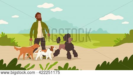 Dogsitter. Man Walking Dogs In Park. Male Character Leads Puppies On Leashes. Sitter Takes Care Of P