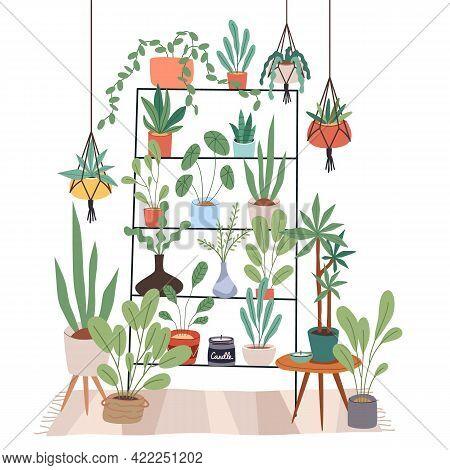 Indoor Plants Stand. Rack For Houseplants. Home Garden. Flowers On Shelves And Hanging Pots. Room In