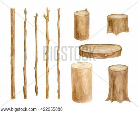 Watercolor Wood Sticks And Stumps Set. Hand Drawn Tree Branches, Wooden Slice Isolated On White. Bar