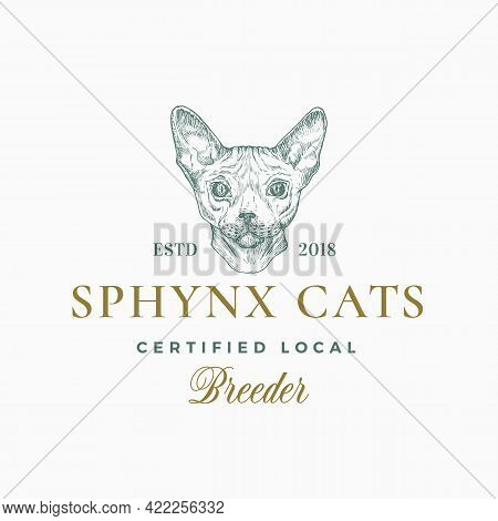 Cat Breeder Badge Or Logo Template. Hand Drawn Sphynx Breed Face Sketch With Retro Typography. Vinta