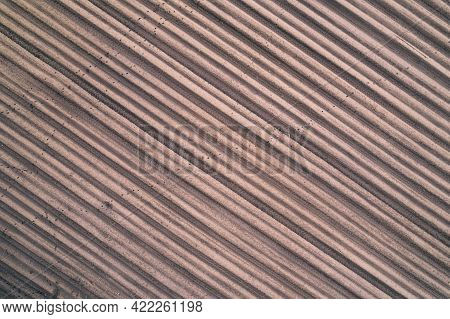 Aerial View Of Furrows On Brown Raw Plowed Field