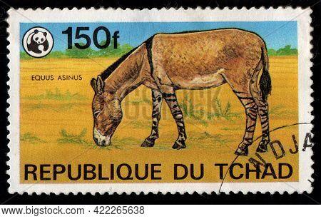 Chad - Circa 1982: Chad Postage Stamp Featuring Equus Asinus. Antelope In Savannah On Postage Stamp.