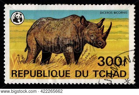 Chad - Circa 1982: African Rhino Depicted On Postage Stamp. Chad Postage Stamp Featuring Rhino. Larg