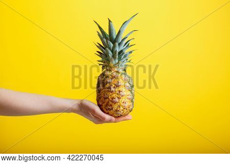 Pineapple In Female Hand. Ripe Juicy Pineapple Tropic Fruit Isolated On Yellow Color Background. Min