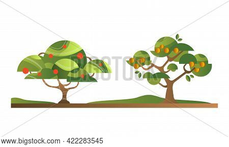Set Of Fruit Trees With Ripe Fruits, Apple And Peach Orchard Tree Flat Vector Illustration