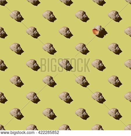 Seamless Pattern With Seashells On A Yellow Background.one Shell Is Deployed.summer Concept.