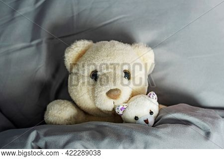 Funny Fluffy Teddy Bears Mother And Cub Lie On Soft Pillow Under Warm Duvet In Bed With Stylish Grey