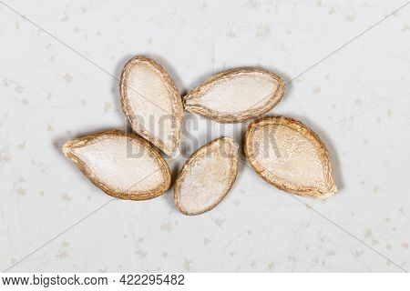 Several Whole Pumpkin Seeds Close Up On Gray Ceramic Plate