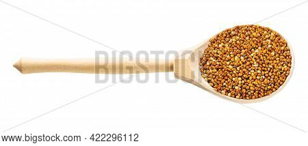 Wooden Spoon With Unhulled Proso Millet Grains Isolated On White Background