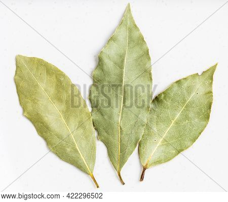 Few Natural Dried Bay Laurel Leaves Close Up On Gray Ceramic Plate