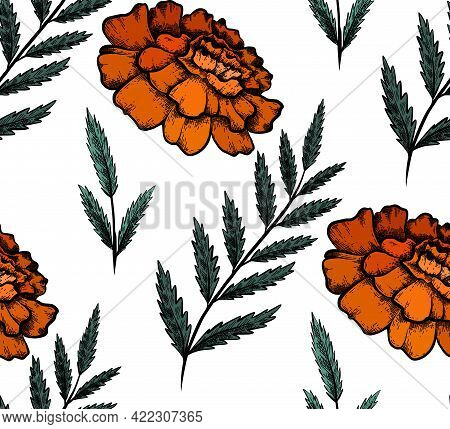Seamless Pattern With Colorful Botanical Sketch Of Marigold Flowers And Branch With Leaves. Vector T