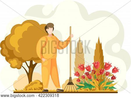 Man Gathering Seasonal Harvest, Remove Leaves With Rake, Works On Yard With Flower Bed. Agricultural