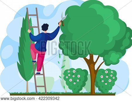 Gardener Works In Garden Cartoon Worker With Scissors Stands On Stairs Cuts Big Green Tree, Takes Ca