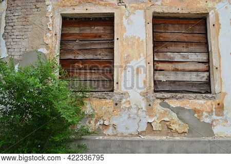 Two Abandoned Boarded Up Windows And A Green Bush Against The Backdrop Of An Abandoned Backdrop.
