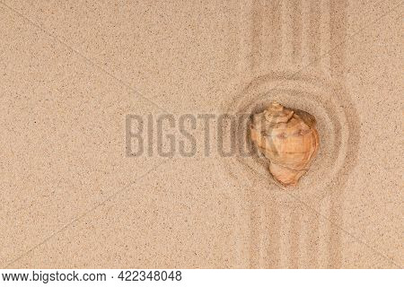 Seashell In The Center Of The Sand Circles. Circle Made Of Sand With Seashell. Top View