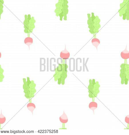 Vector Seamless Pattern With Radish On White Background. For Spring And Summer Decoration, Fest Invi