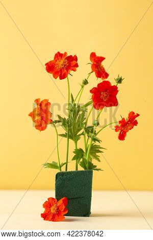 Scarlet Flowers Gravitate On A Yellow Background. Floral Background, Summer Background. Copy Space.