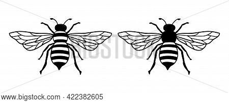 Vector Bee Line Icon Illustration. Graphic Logo Of Insect, Simple Doodle Emblem. Hand Drawn Honeybee