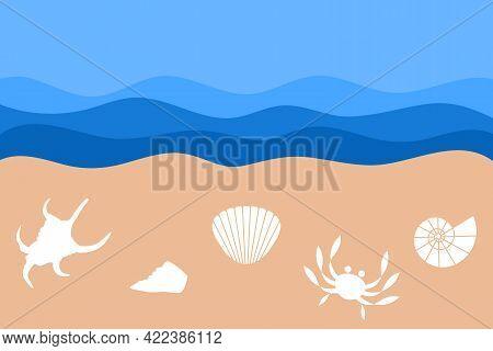 Set Of Seashells On The Sandy Shore. Summertime Travel Concept