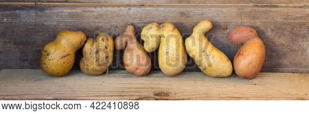 Potato Banner, Ugly Potatoes On A Wooden Background. Potato Variety, Unique.