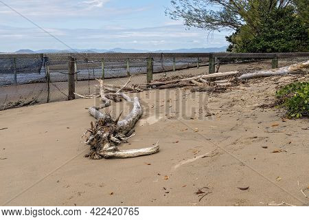 A Swimming Enclosure With Fallen Trees And Driftwood On The Beach Caused By The Erosion By Natural E