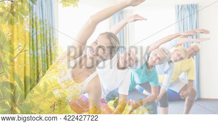 Composition of female instructor with senior man and women exercising with tree overlay. retirement, fitness and active lifestyle concept digitally generated image.