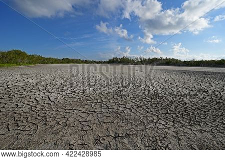 Dry Exposed Bed Of Eco Pond Under Severe Drought Conditions In Evrerglades National Park, Florida.