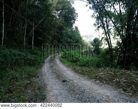Gravel Street Of Panchase Route Way For Trekking In Forest On Anadu Hill Mount For Nepali People And