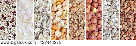 Popular Cereals And Cereals For A Healthy Diet In The Form Of A Panoramic Collage