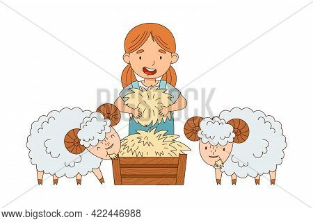 Little Girl In Overall Feeding Sheep With Hay Rested In Wooden Crate Vector Illustration