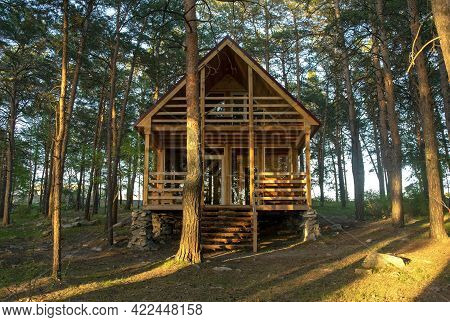 Small Wooden House In The Middle Of A Beautiful Pine Forest In The Summertime. Coniferous Forest.