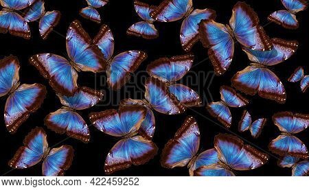 Wings Of A Butterfly Morpho. Flight Of Bright Blue Morpho Butterflies Abstract Background.
