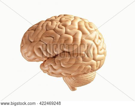 3d Illustration Of Human Brain Made Of Wood. Side View Of Wooden Human Brain