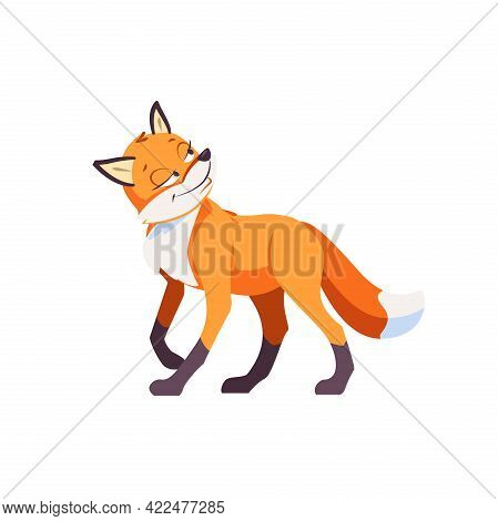 Sly Fox Smiling Ponders A Plan Of Deception. Cartoon Vector Illustration Isolated On White Backgroun