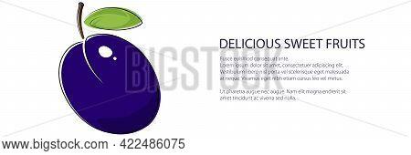 Purple Plum Banner , Fruit Isolated On White Background, Vector Illustration