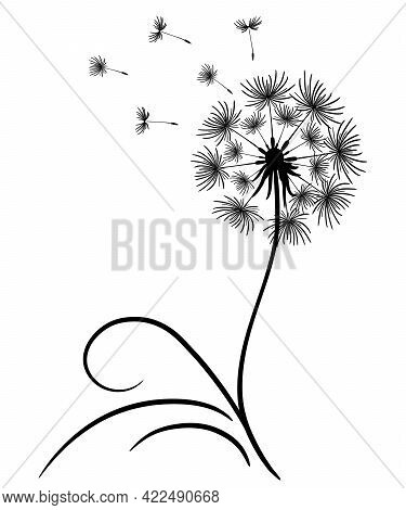 Delicate Dandelion With Flying Seeds. Lonely Flower With A Thin Stem And Leaves. Black Outline Drawi