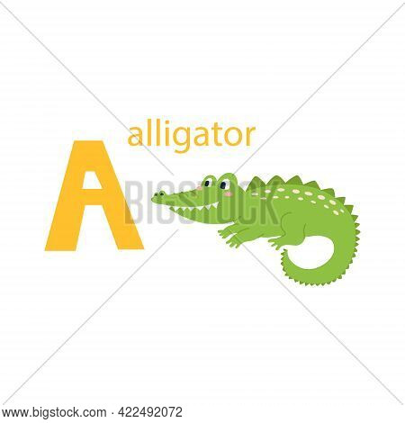 Cute Alligator Card. Alphabet With Animals. Colorful Design For Teaching Children The Alphabet, Lear