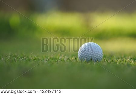 Golf Ball On Green In The Evening Golf Course With Sunshine. White Golf Ball Embedded In The Tall Gr