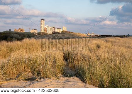 Dunes And View On Vlissingen City With Sandy Beach On Sunset