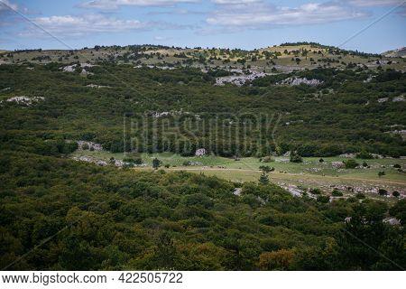 High Rocks Ai-petri Of Crimean Mountains. Bgreen Lawn On The Mountain Peaks Russia. Pine Mountain Cr