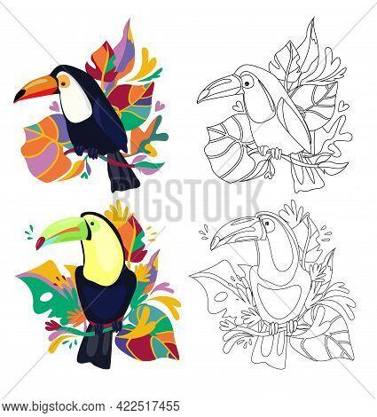 Beautiful Coloring Set Cute Toucan With Tropical Leaves Print Design Tropics Vector Illustration, Si