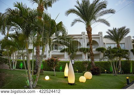 Beautiful Landscaping With Trimmed Bushes Against The Background Of Tall Palms With Evening Illumina