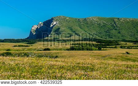 View Of The Upper Plateau Chatyr-dag In Crimea On A Bright Sunny Day.