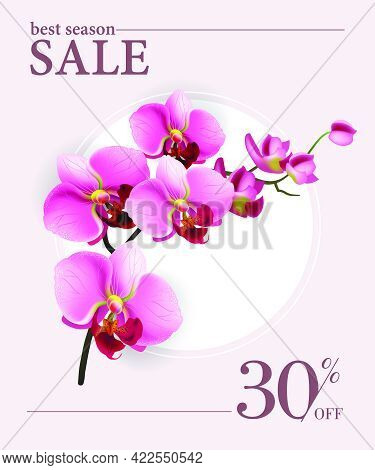 Best Season Sale, Thirty Percent Off Poster Design With Pink Flowers And White Circle. Typed Text Ca