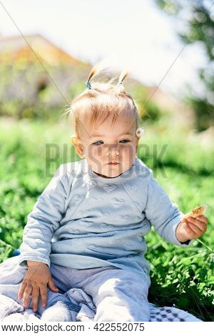 Cute Toddler With Two Ponytails Holds Fruit Chips In Her Hand While Sitting On A Blanket On A Green