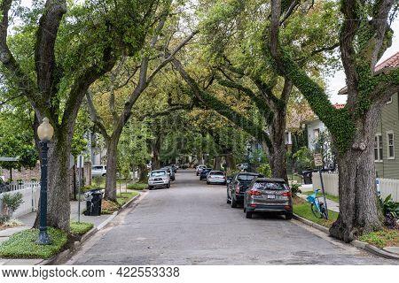 New Orleans, La - April 7: Oak Tree Lined Harding Street Near Bayou St. John On April 7, 2019 In New